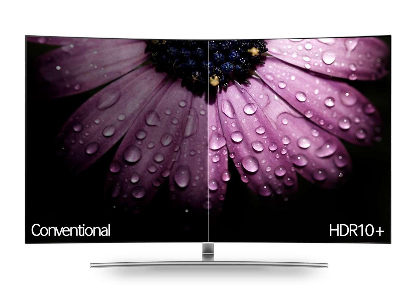 Guida alla scelta del televisore